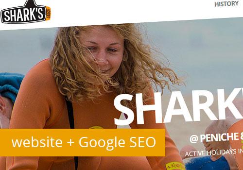 Novo Website com Google SEO