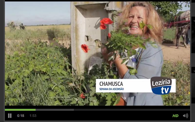 LeziriaTV1